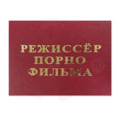 Режиссер порнофильма